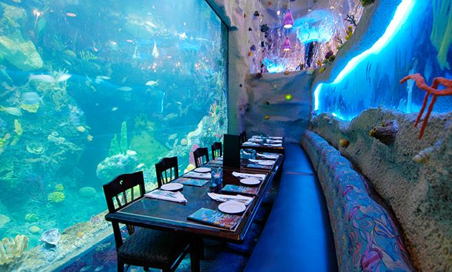 بالصور صور حوض سمك , اكبر احواض سمك عملاقة ومطاعم 10689
