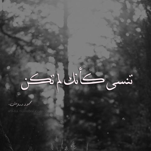 بالصور تنسى كانك لم تكن , صور للشاعر الاديب محمود درويش 10717 2