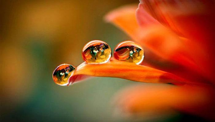 بالصور الماء سر الحياة , نعمة المياة للكون كله 10728 14