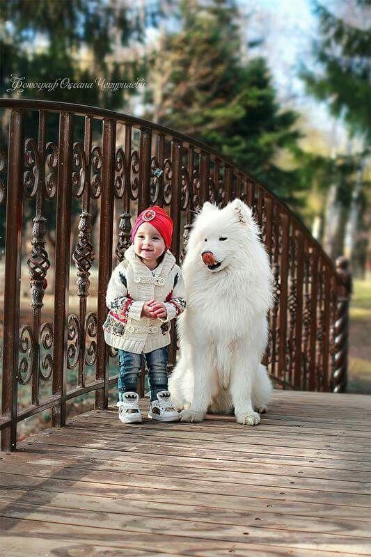 بالصور صور بدون تعليق , اطفال يعشقون الكلاب 10784 2