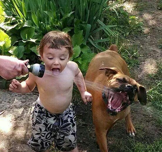 بالصور صور بدون تعليق , اطفال يعشقون الكلاب 10784 4