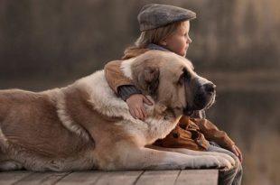 صوره صور بدون تعليق , اطفال يعشقون الكلاب