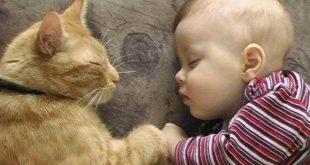 صورة صور اطفال مضحكين , النظرة للطفل كالحياة