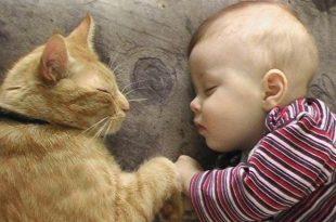 صوره صور اطفال مضحكين , النظرة للطفل كالحياة