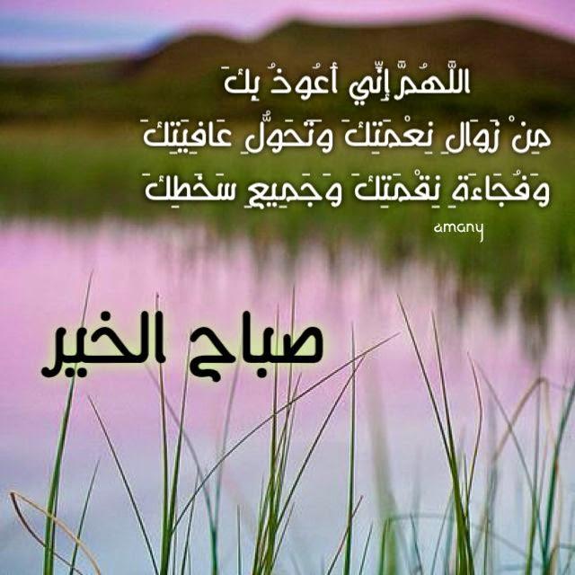 بالصور صور مكتوب عليها صباح الجمال , صباح الورد 15087 8