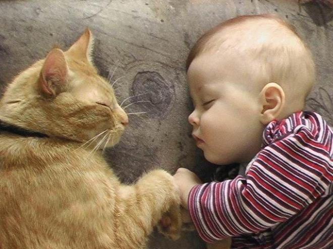 بالصور صور اطفال مضحكين , النظرة للطفل كالحياة 15110 2